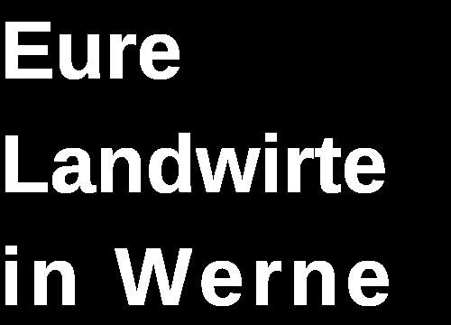 Website_Logo_weiß_transp