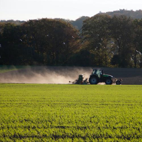 Landwirte_in_Werne_Durchs_Jahr